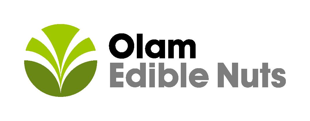 Wholesale Edible Nut Supplier